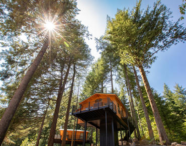 New Skamania Lodge Tree House West