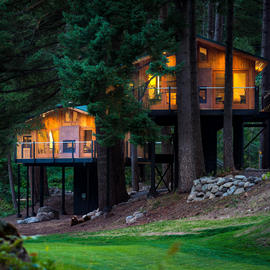 tree house lodges